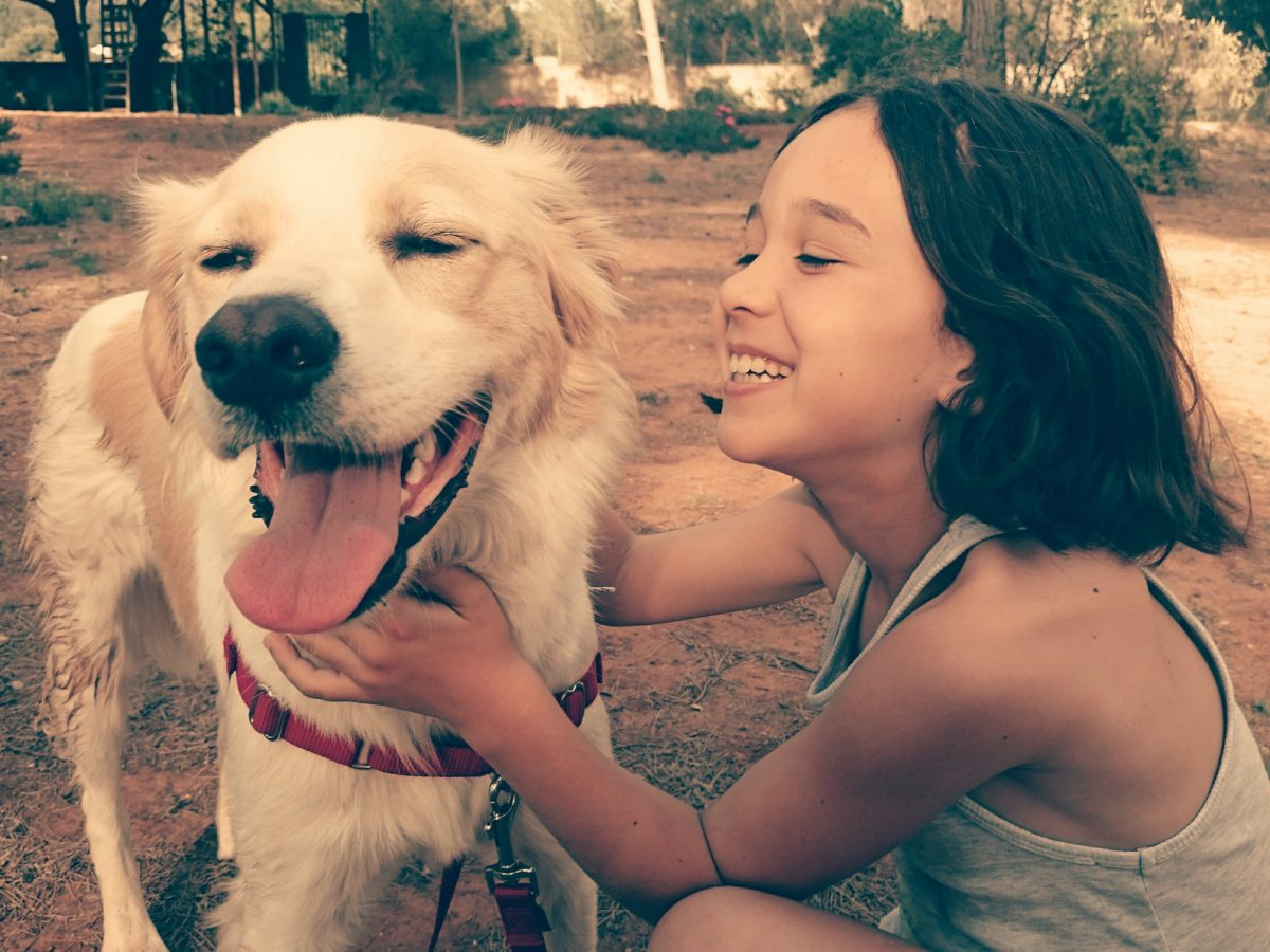 A child plays with her dog after her parents divorced with the help of a Chicago divorce lawyer.